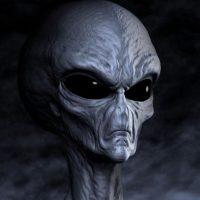 Alien Lifeform