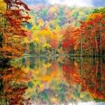 Alluring Autumn Adirondack Wilderness Walk