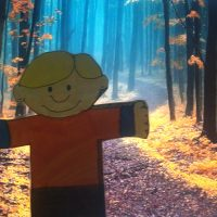 Stanley Autumn Woods