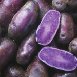The Anti-Inflammatory & Anti-Oxidant Properties Of Purple Potatoes
