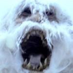 The Monstrous Abominable Snowman Yeti Beast