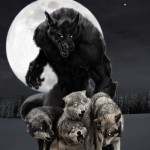 Werewolf Commands Wolf Pack