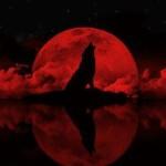 Double Blood Moon Tetrad Total Eclipse Selenelion Warning