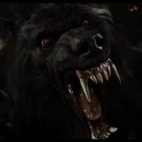 Hellishly Enraged Werewolf