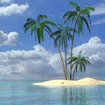Operation Palm Tree