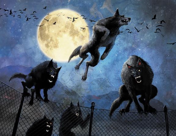Mystic Wolf Free Spins
