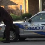 Man Dressed In Dog Suit Angers Police