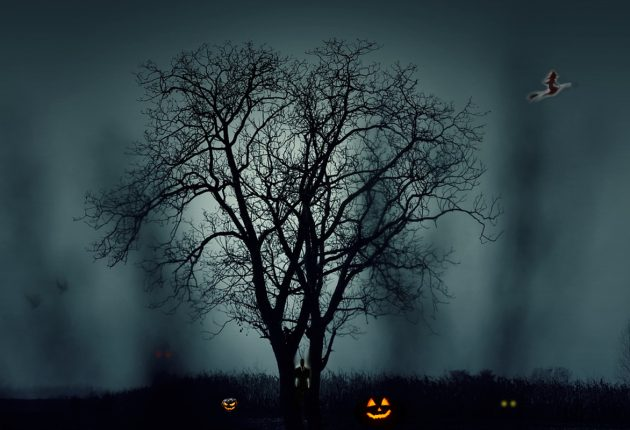 The frightening field of Halloween horrors...