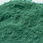 The Superfood Spirulina