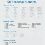 The 90 Nutrients Essential To Human Health