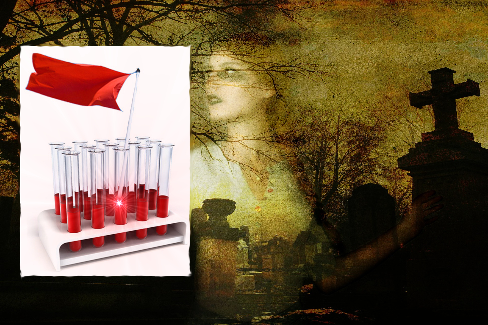 Do Vampires Prefer A Certain Type Of Human Blood?