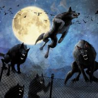 Pack Of Angry Rabid Werewolves On The Prowl!