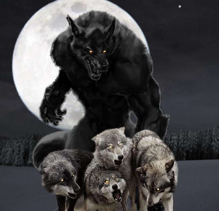 Wolf Moon Werewolf Warning