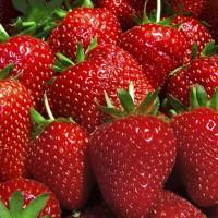 Magical Strawberries