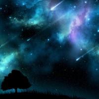 Perseid Shooting Star Showers