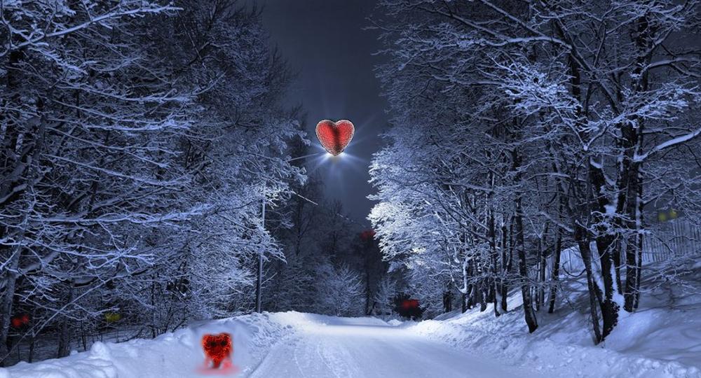 Dark Valentines Ice Moon Werewolf Warning