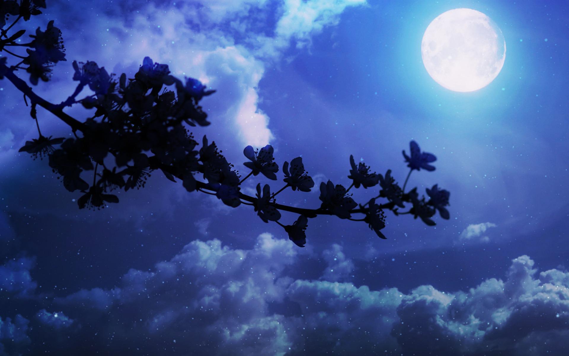 Super Flower Moon Werewolf Warning