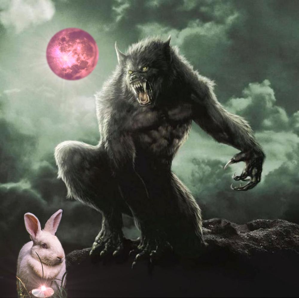 Pink Supermoon Werewolf Warning