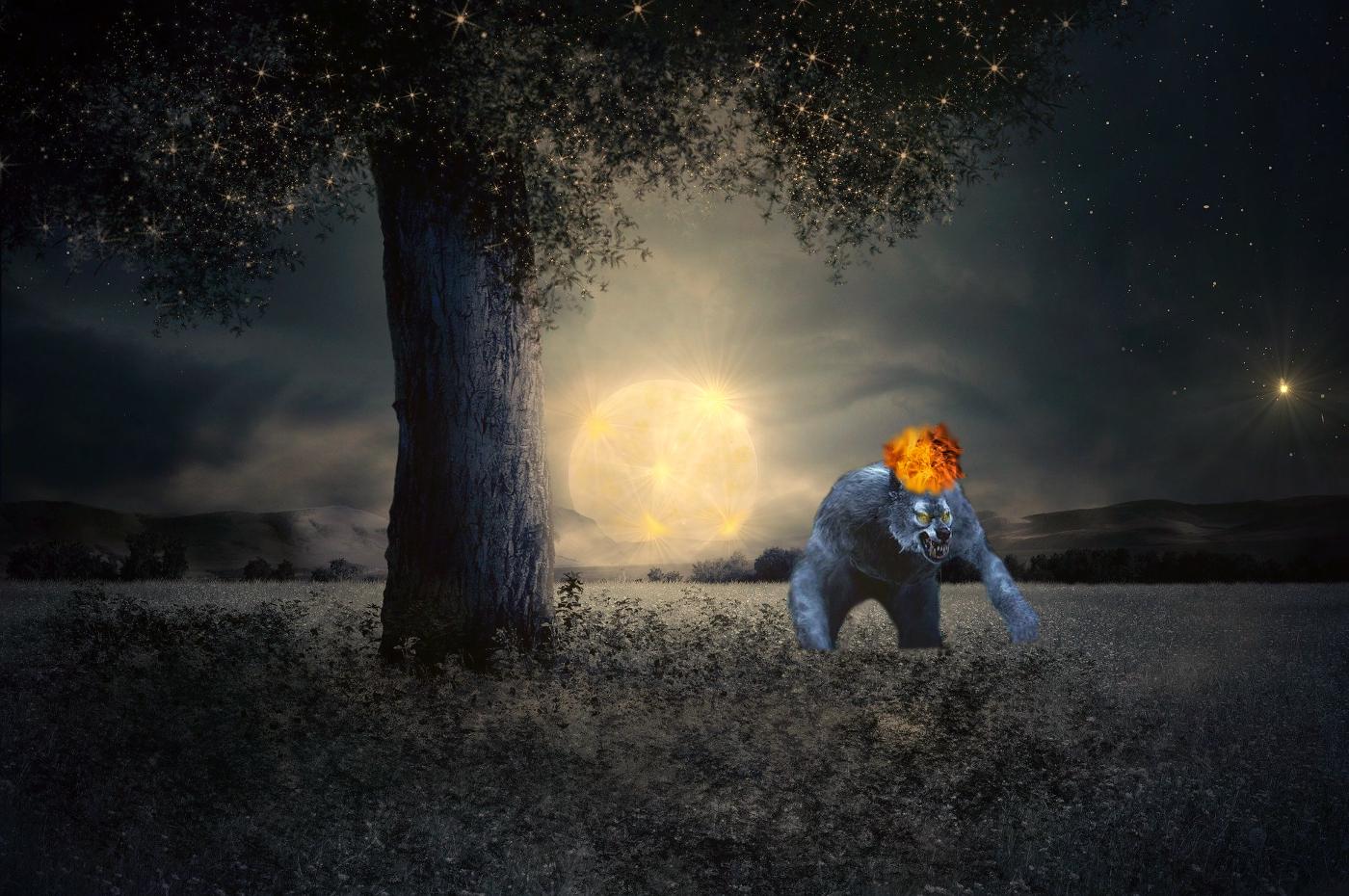 Fire Moon Werewolf Warning